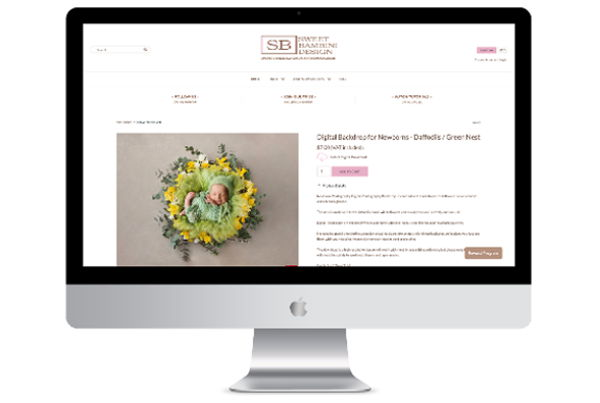 Custom Shopify Theme for Photographer with Digital Products