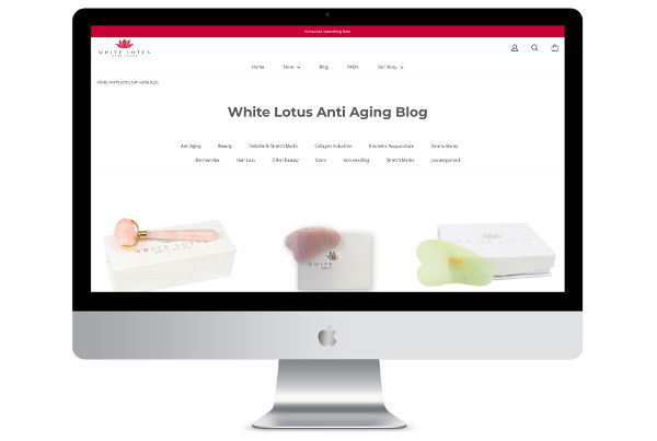 Magento to Shopify Migration for White Lotus